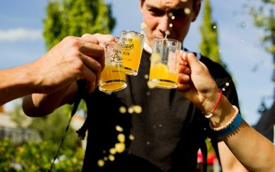Volunteer Opportunity: Clover Valley Beer Festival